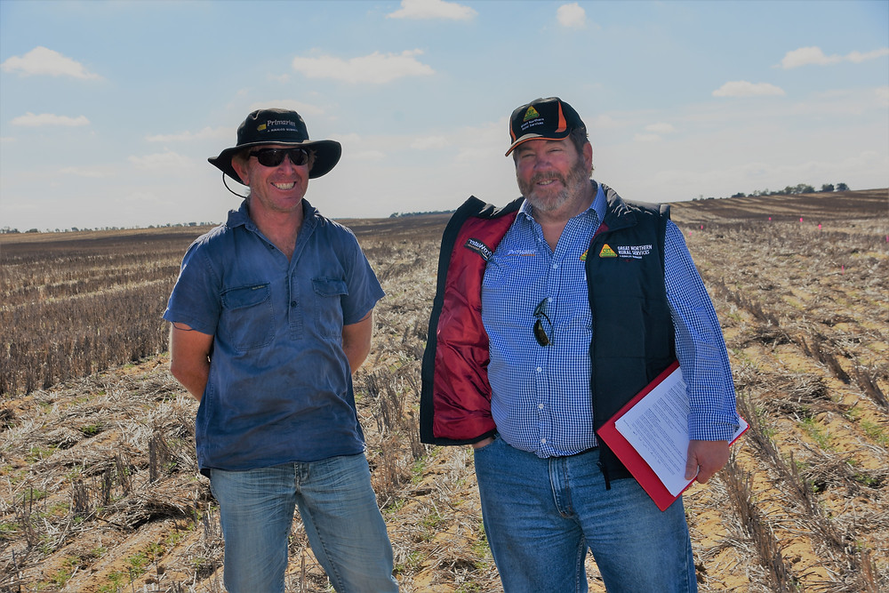 Ashley Eastough & Tony Rosser - SE14 wetter trial to improve lupin establishment