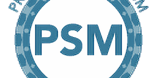 Scrum Master - Certifications PSC & PSM1 incluse
