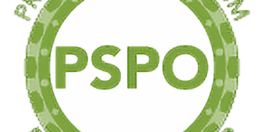 Product Owner - Certifications PSC & PSPO1 incluse