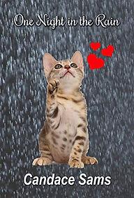One Night in the Rain.jpg