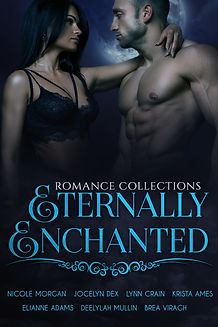 Eternally Enchanted eBook flat cover wit