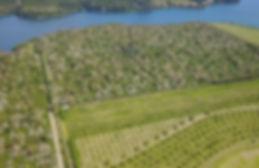 Fazenda Lagoa das Palmeiras 006.jpg