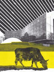 La vache et Niemeyer 3