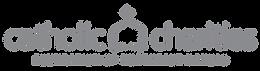 CCNEK_logo-01.png