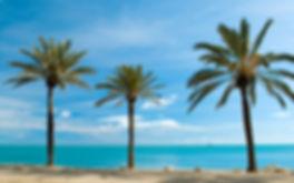 Malaga beach 1.jpg