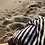 Thumbnail: Zebra Turkish Towel