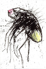 Firefly Ink and paint on paper 2021