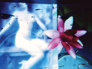"""""""She was Here"""" Homage Found image bricolage Photo Print, 2013"""