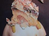 """Corn Girl"" Hand Messages Found image bricolage Photo Print"
