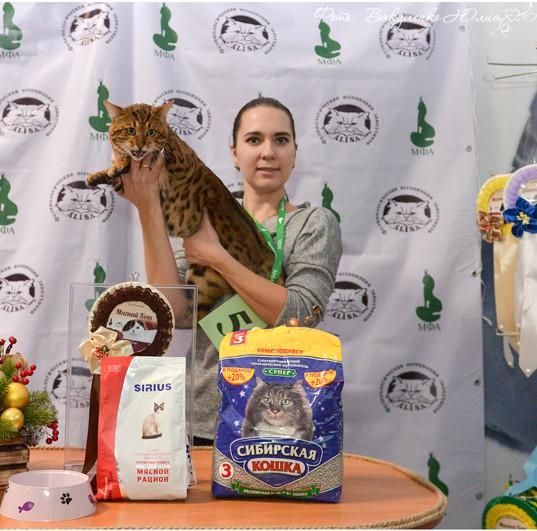 Best cat 10.jpg
