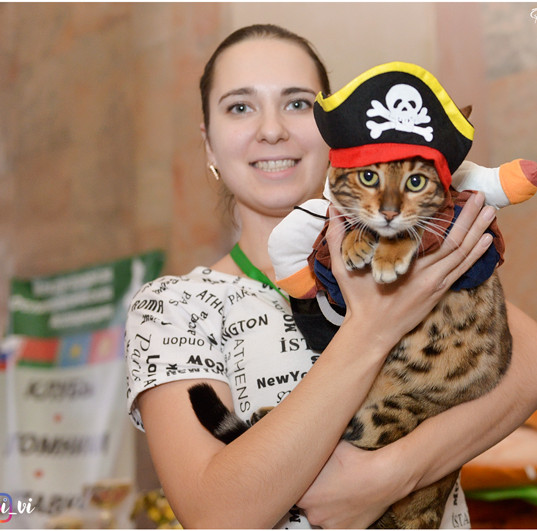 Пират.jpg