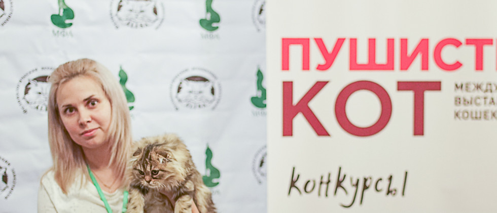 Best kitten.jpg