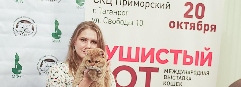 Best cat 4.jpg