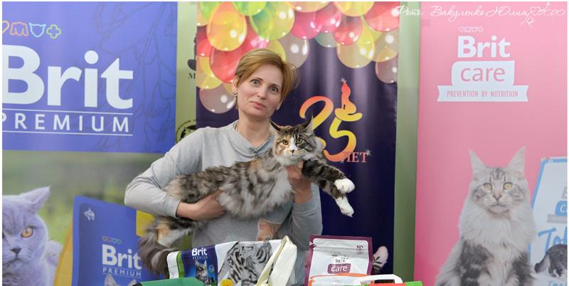 Best of best kitten 3.jpg
