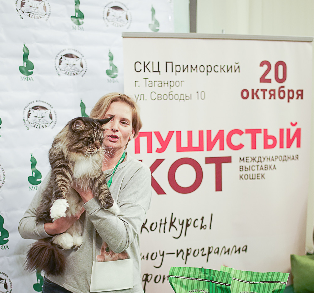 Best cat oppozite sex ПДШ.jpg