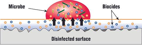 Germ Graphic.jpg