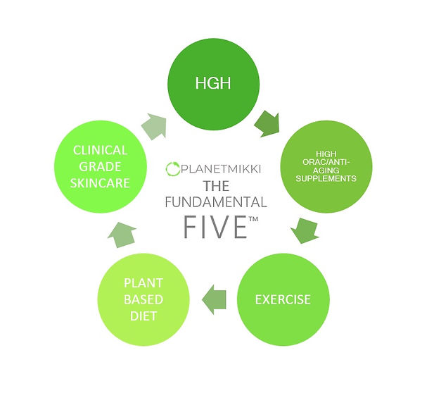 Fundamental Five InfoGraph.jpg