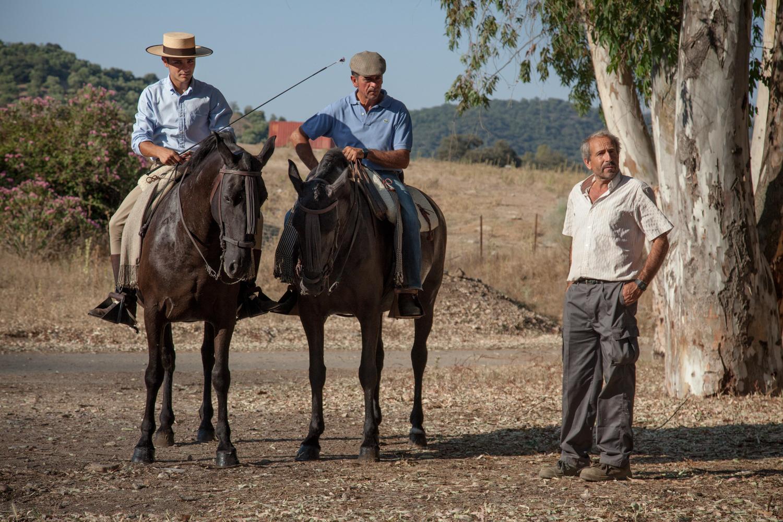 Horses - Cortez, Spain - 2015
