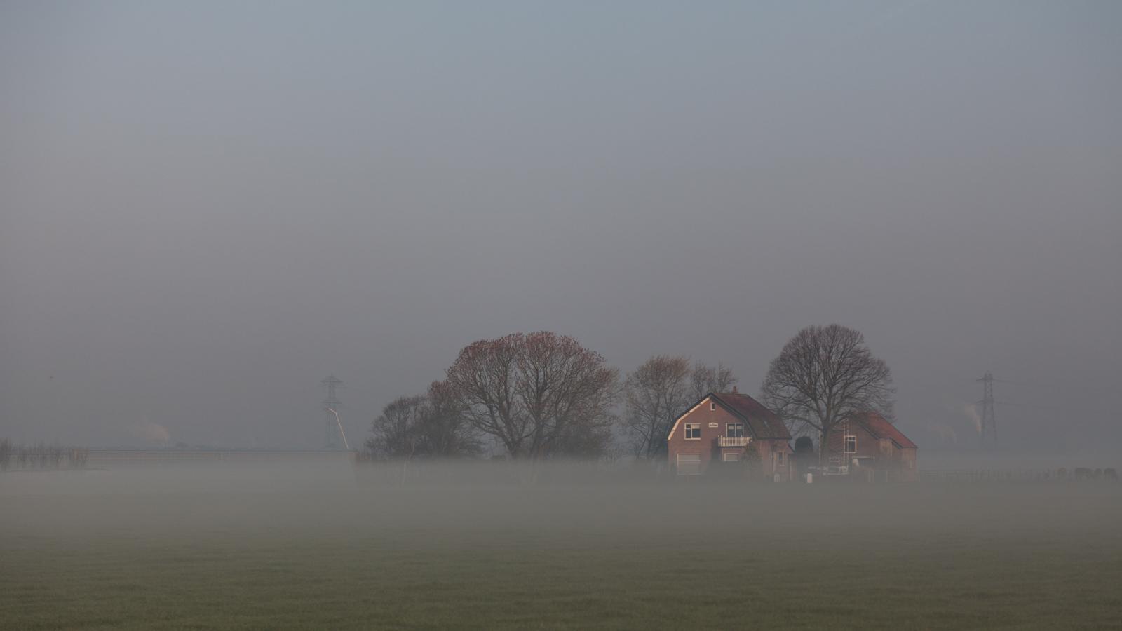 Early Morning Fog - Korteraar, Netherlands - 2015