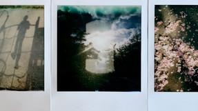 18:44 Souvenirs du parc. 34/100