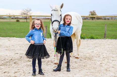 Shooting photo cheval metz