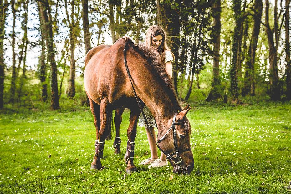 ©3iphotographie, Séance photo équine Metz
