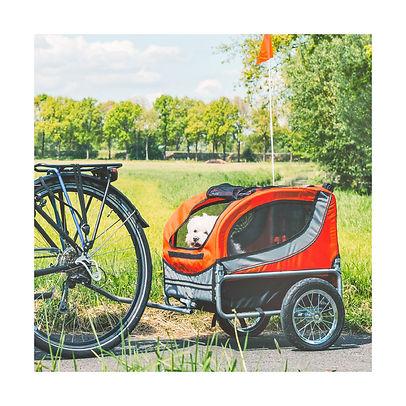 0001359048-1-fietskar-runner-2-roodgrijs