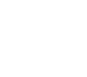 57de2e2925c4cdeb030d9faa_wounded-warrior