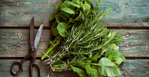 How Urban Herbs are used to treat disease, not only on the basis of their chemical components