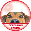 BOUTON DETECTION CANINE.png