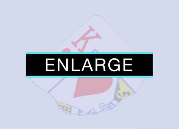 Enlarge by SansMinds