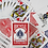 Thumbnail: Bicycle Special Deck Playing Cards (plus 11 Online Effects) (GV $2)