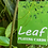 Thumbnail: Leaf Playing Cards