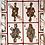 Thumbnail: Anatomica Playing Cards