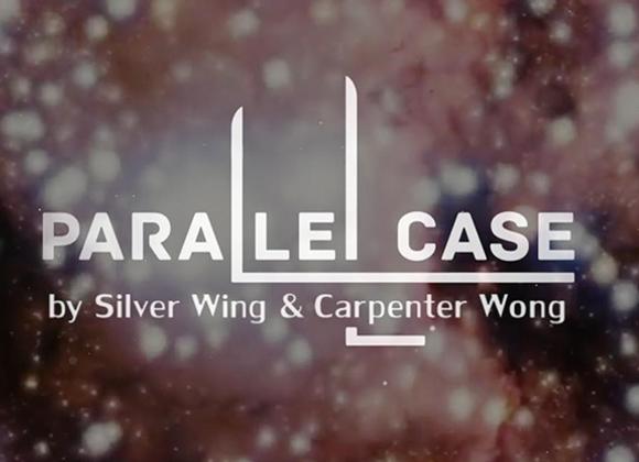 P Case by Bocopo Magic & Silver Wing