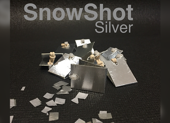 SnowShot SILVER (10 ct.) by Victor Voitko (GV $10)