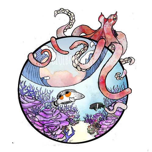 Exmouth Octopus Print