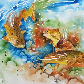 Rich Pool #41, Brown Trout, Watercolor,  15 x 22, $1100.