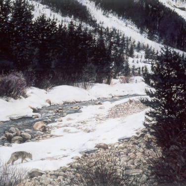 On the way to Independence Pass, pastel, 18 x 24, National Award Winner, $2000.