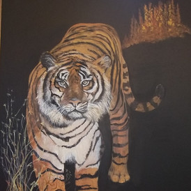 Walk of Tiger, acrylic