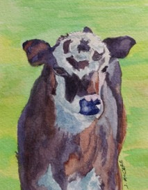 """Bullseye Calf, watercolor, 4"""" x 6"""", $100."""
