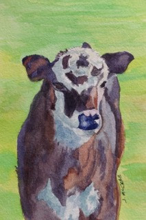 "Bullseye Calf, watercolor, 4"" x 6"", $100."