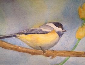 "Blackcap Chicadee, watercolor, 8"" x 10"", SOLD"