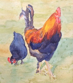 "Roosters Rule, watercolor, 8"" x 10"", $200."