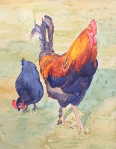 "Roosters Rule, watercolor, 8"" x 10"", $200."