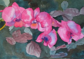 """Orchids of Hawaii, watercolor, 6"""" x 10"""", SOLD"""