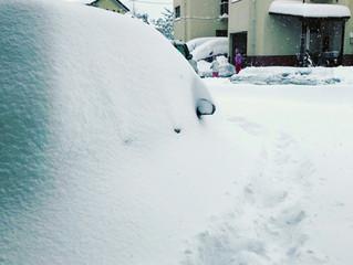 サラリーマン諸君へ!人生100年時代に向けた雪かきのススメ