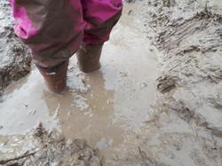 mudpuddle