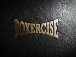 Boxercise image.jpg