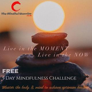 Mindful Challenge Link.jpg